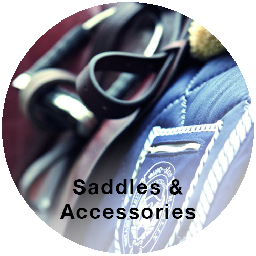 Shop Saddles & Accessories