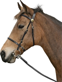 CAVALINO IN HAND BRIDLE-bridles & bits-Spurs