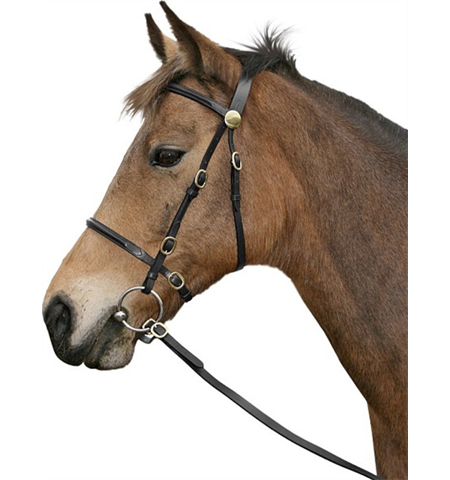 CAVALINO IN HAND BRIDLE