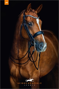 SCHOCKEMOHLE VENICE DOUBLE BRIDLE -weymouth bridles-Spurs