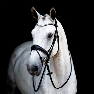 STUBBEN SWITCH MAGIC TACK BRIDLE-weymouth bridles-Spurs