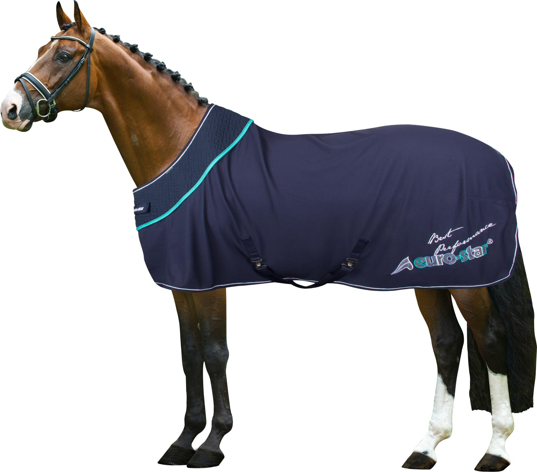 Eurostar Show Rug Excellence 181 Covers Rugs And